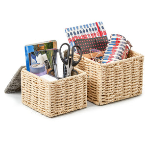 Paper Rope Woven Tidy Storage Baskets with Lid-Set of 4