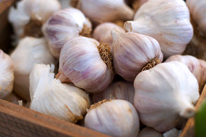 Organic Garlic Bulb - The Organic Butcher of McLean