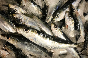 Fresh Sardines - The Organic Butcher of McLean