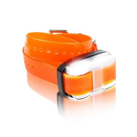 Edge 1 Mile Extra Collar Orange