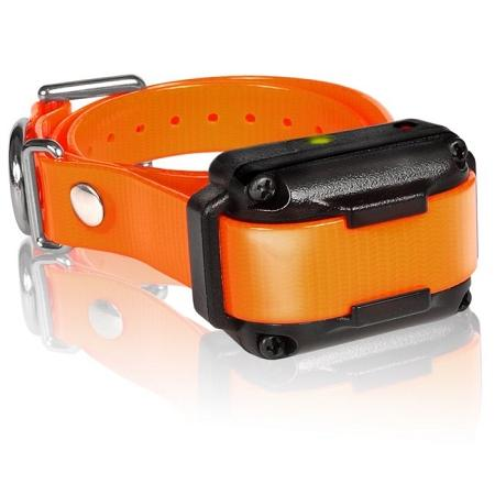 Iq Plus Additional Receiver Orange Strap