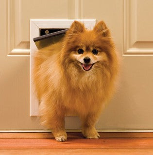 Petsafe Freedom Pet Door - Small