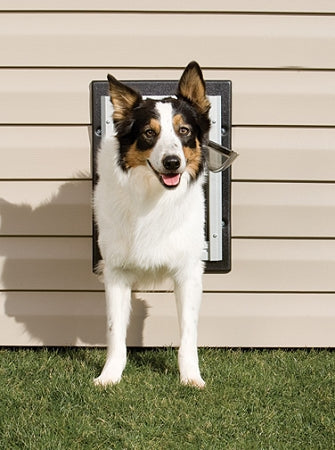 Petsafe Wall Dog Door - Medium
