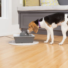 Petsafe Drinkwell Seascape Ceramic Dog And Cat Water Fountain