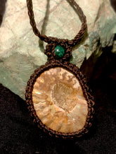 Load image into Gallery viewer, Ammonite with chrysocolla pendant