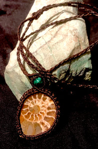 Ammonite with chrysocolla pendant