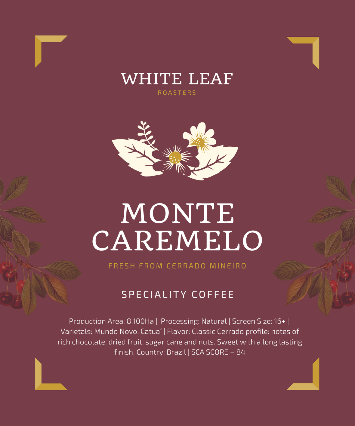 Monte Caremelo - Specialty coffee - Brazil - 250 Grams