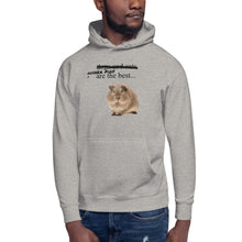 Load image into Gallery viewer, guinea pig Unisex Hoodie
