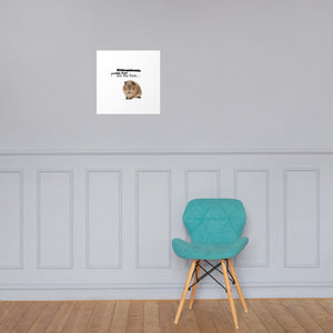 GUINEA PIG ARE THE BEST Poster