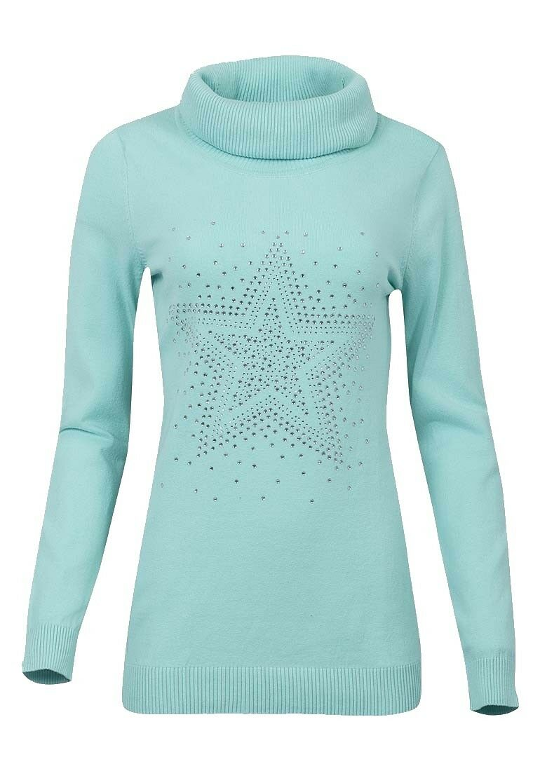 Mint Roll Neck Ribbed Knitted Star Embellished Jumper