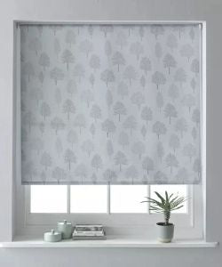 Daylight Roller Blinds