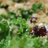 Quinoa Kale Salad Recipe