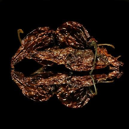 Bhut Jolokia Peppers - World's Hottest Chile
