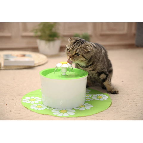 PawHacks Drinkwell Fountain (Pet Water Fountain) - Pawhacks