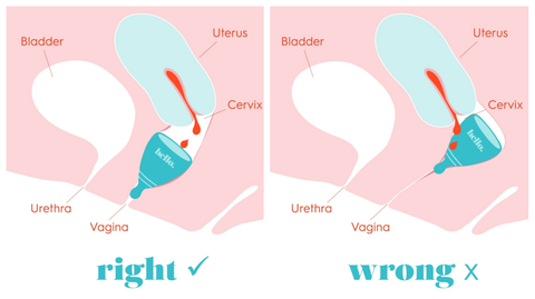How to insert your menstrual cup