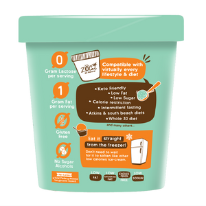 Plant-Based No Allergen Lite Ice Cream- Mint Chip