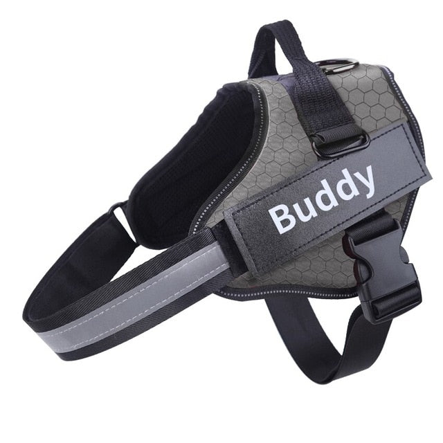 Personalized No Pull Dog Harness
