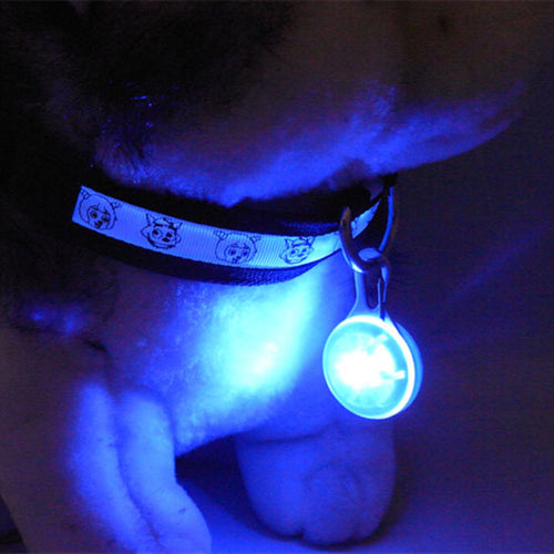 LED Flashlight Pet Necklace Luminous for Safety