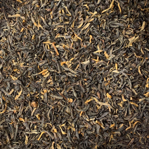 Ancient Forest Black Tea (Camellia sinensis)