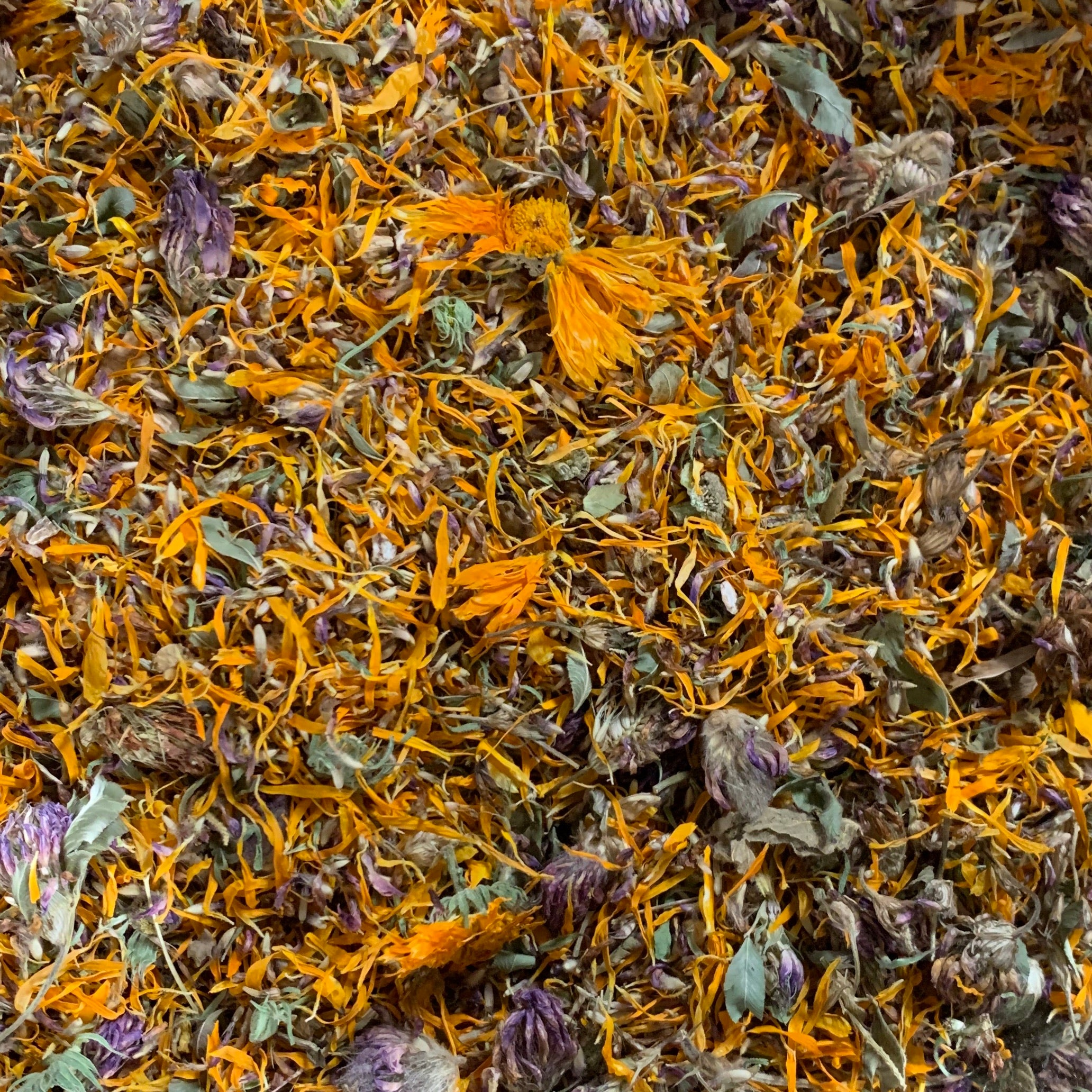 Sunshine Day Herbal Tea Blend