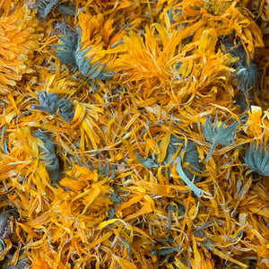 Calendula (C. officinalis)