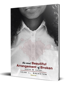 The Most Beautiful Arrangement of Broken: quotes & poetry (Book II.5)