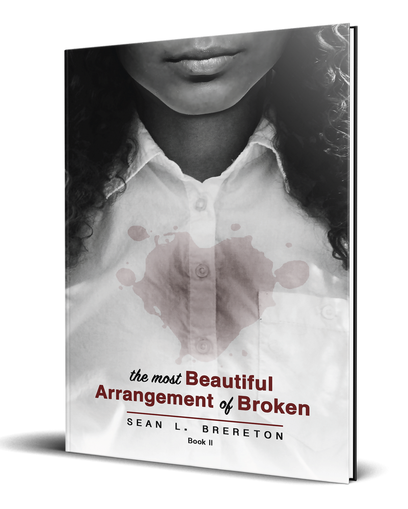 The Most Beautiful Arrangement of Broken: Book II (The Most Beautiful Arrangement of Broken Series)