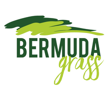 Load image into Gallery viewer, Bermuda Grass
