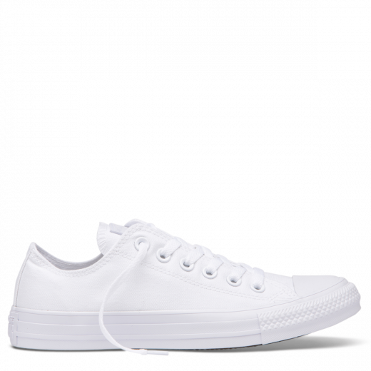 Converse Chuck Taylor All Star Canvas Shoe White Monochrome