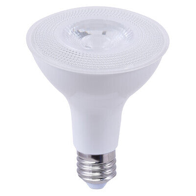 LED PAR30 Short Flood 40 Degree