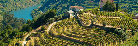 The Douro wine regions, Portugal