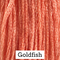 Goldfish - Classic Colorworks