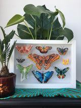 *Digital copy* Butterfly Collection PDF Embroidery Pattern