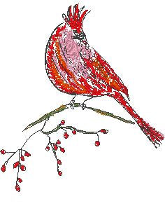 Cardinal Bird - Embroidery Design