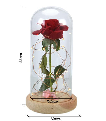 Happy Valentine´s Forever Rose In Glass LED Light