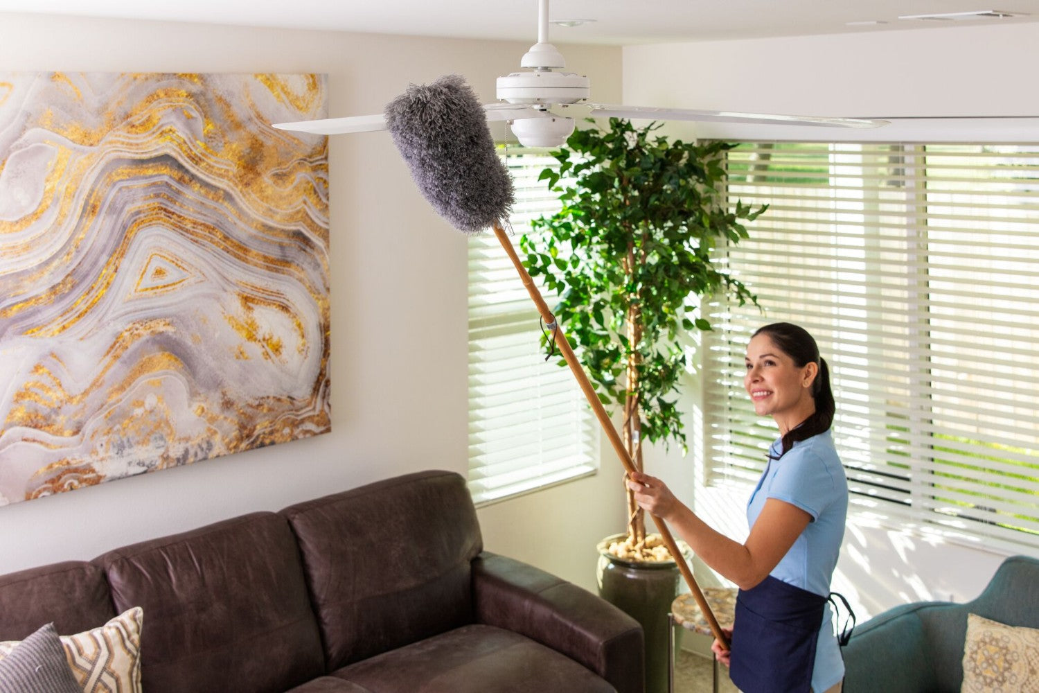 Microfiber Feather Duster with Extension Pole
