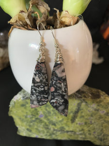 Boho wire wrapped Crinoid Fossil earrings sterling silver