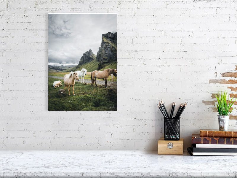 The Icelandic Horses II