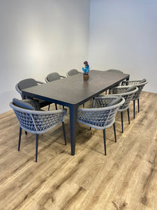 Silver Grey Fishnet dining Set for 8