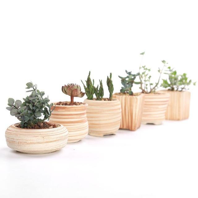 Victoria - Multipurpose Ceramic Planter - Silky decor