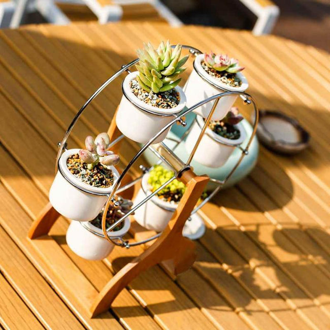 Coral - Ferris Wheel White Ceramic Flower Pots
