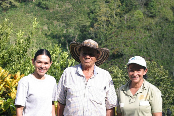 Is Coffee Sustainable? Learn what these 3 big certifications mean for you, farmers, and the planet.