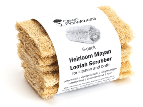Compostable Loofah Sponges (set of 6)