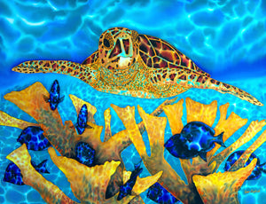 "Painting - Hawksbill Turtle & Blue Tangs - 30"" x 40"""