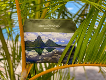 Load image into Gallery viewer, Jade Mountain Pouch