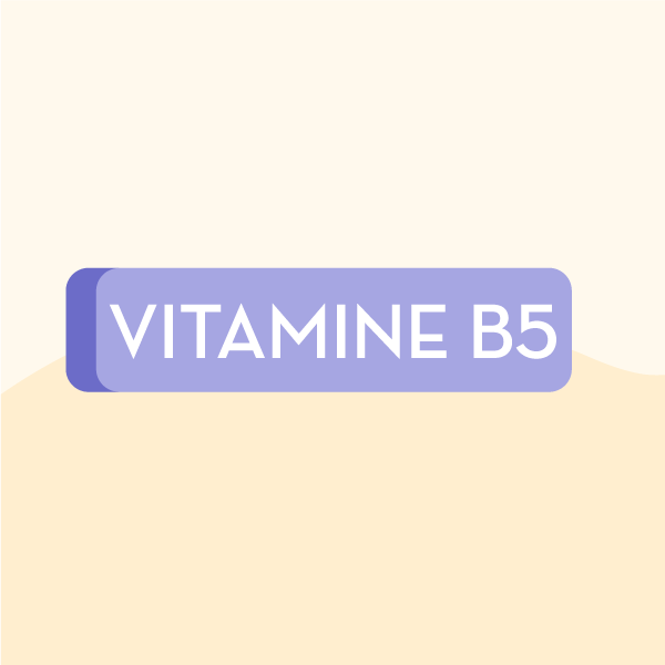 Vitamines du groupe B