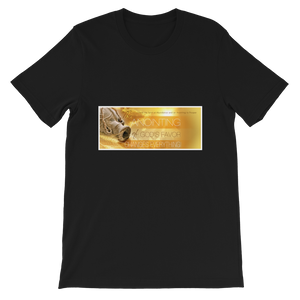 The Anointing Of God's Favor Changes Everything Adult Unisex T-Shirt