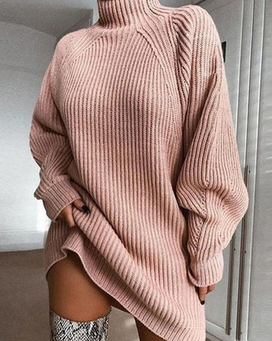 Brief Solid High Neck Sweater