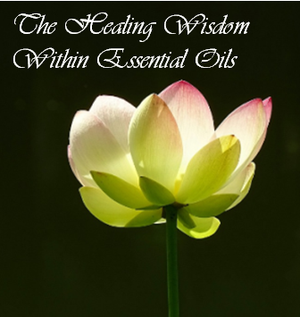 Healing Wisdom Within Essential Oils