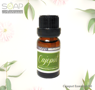 Cajeput Essential Oil Bottle | Soap Artisan